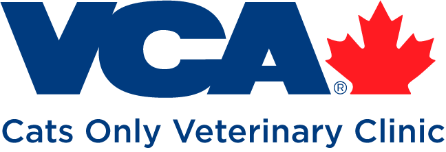 Cats-only-veterinary-clinic-logo