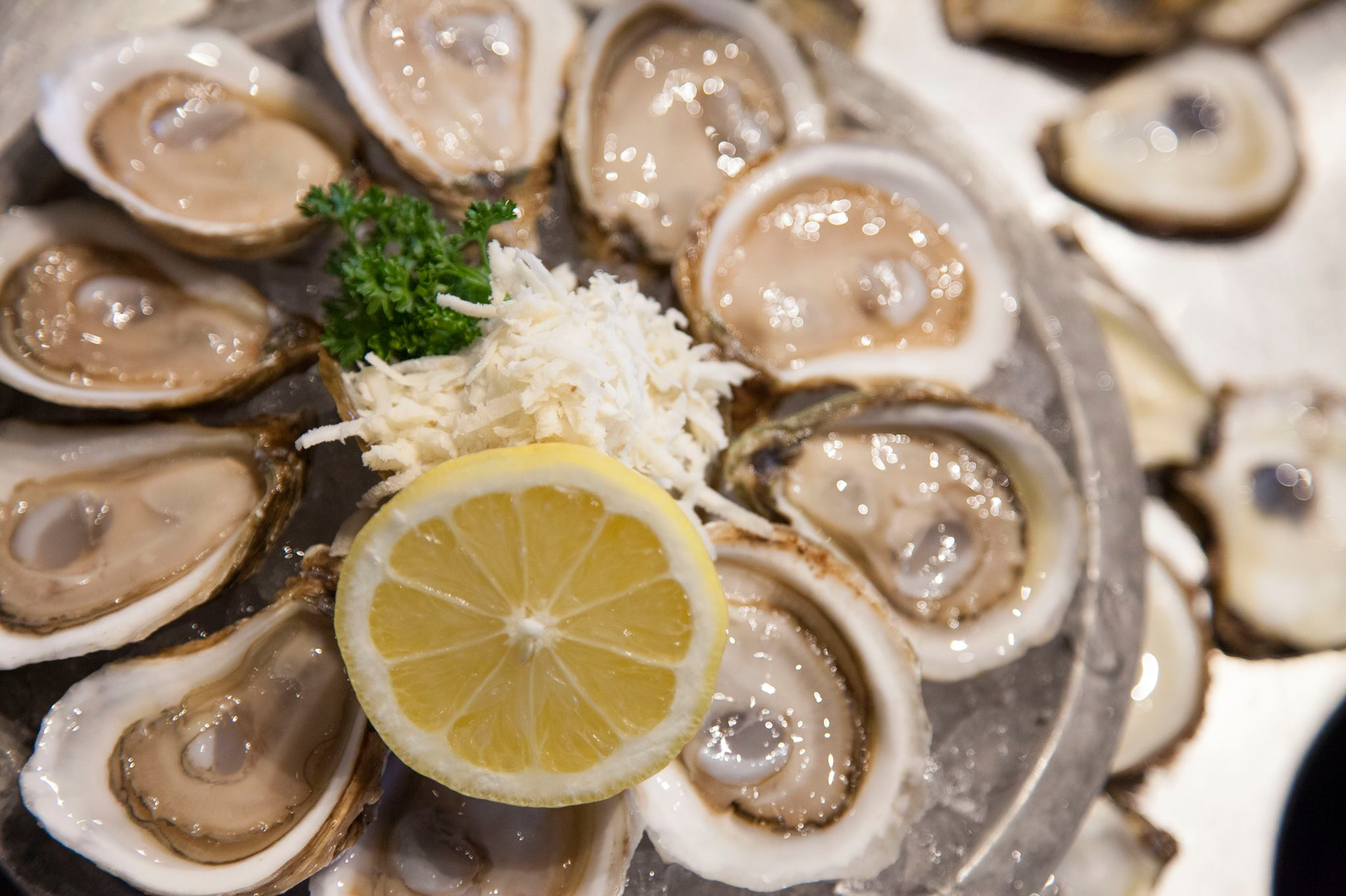 Chewies-fresh-raw-oysters