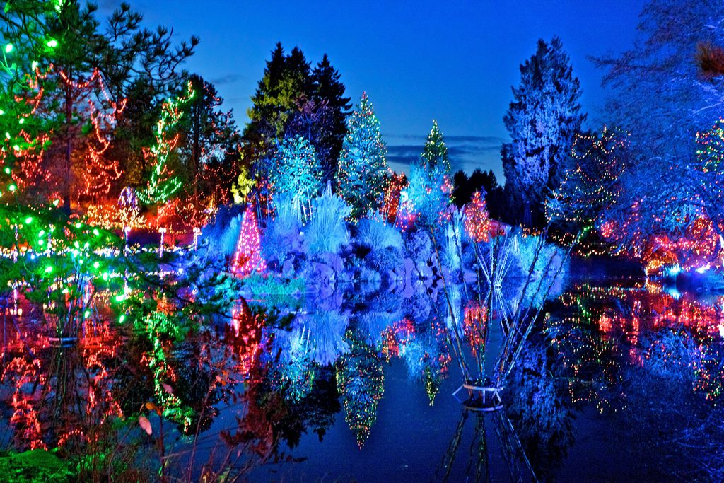 Vancouver-lookout-christmas-light-displays