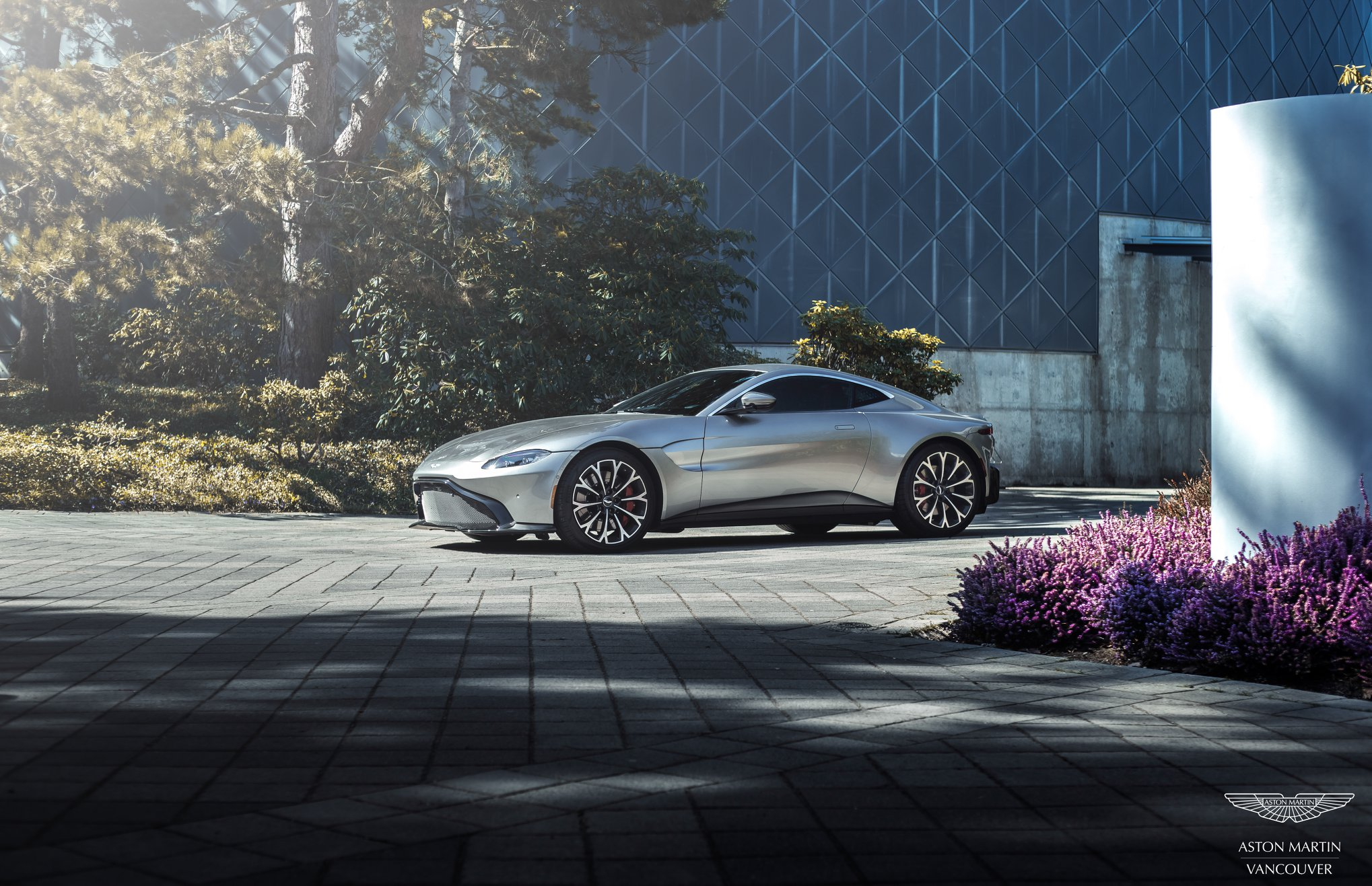 Aston-martin-tamed