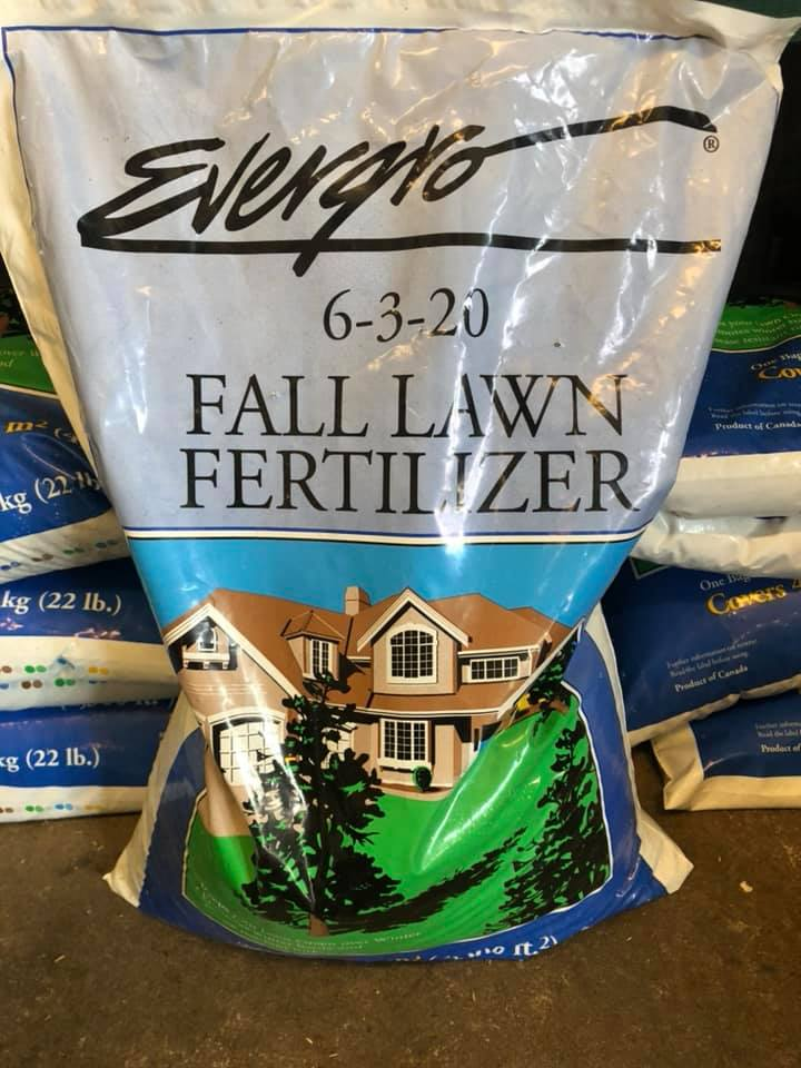 Evergro-lawn-fertilizer